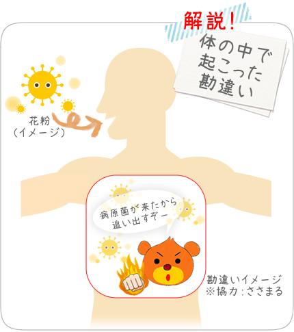 隈笹エキスで花粉症対策