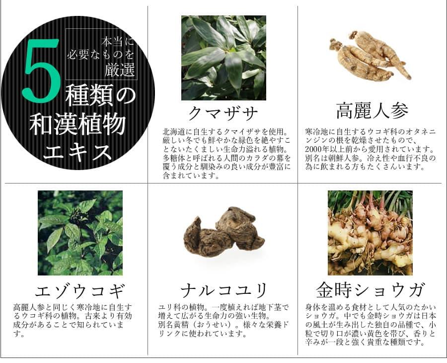 5種類の和漢植物エキスと熊笹の栄養ドリンク